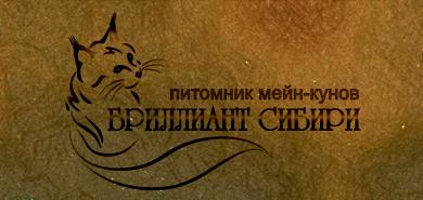 Создание Логотипа питомника мейн-кунов